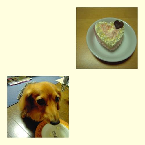cake_20130528231508.jpg
