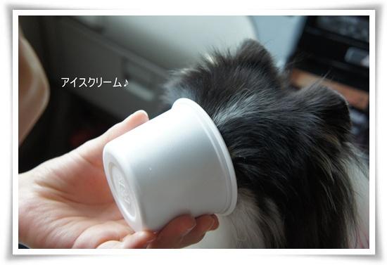 アイスクリーム♪♪DSC06546