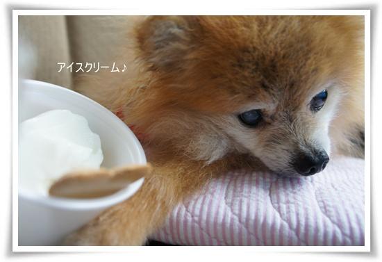 アイスクリーム♪♪DSC06542