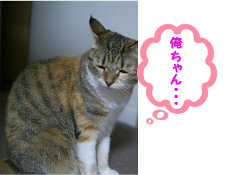 blogのど自慢6e