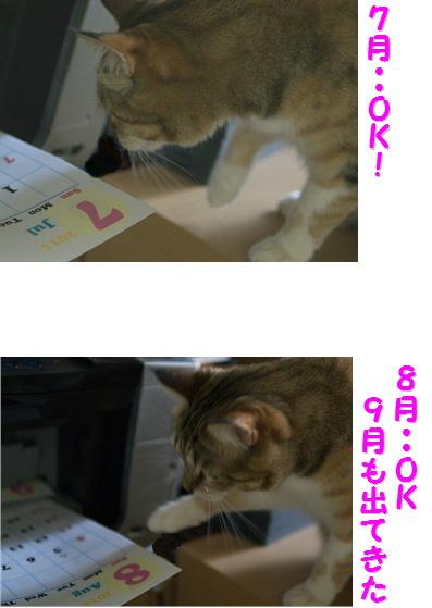 blogのど自慢5b