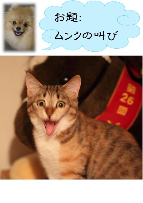 blog真寿ちゃんの一発芸2c