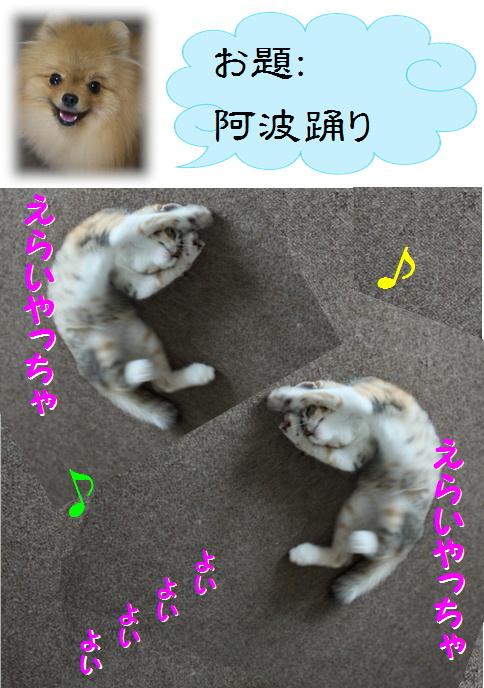 blog真寿ちゃんの一発芸3c