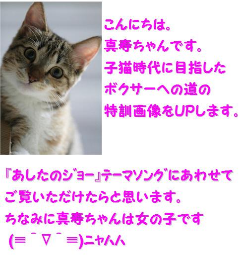 blogあしたのシン1-3