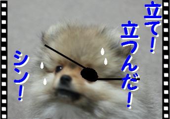 blogよそ見パンチ俺ちゃん流8