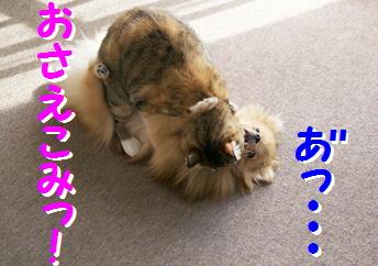 blogよそ見パンチ俺ちゃん流10