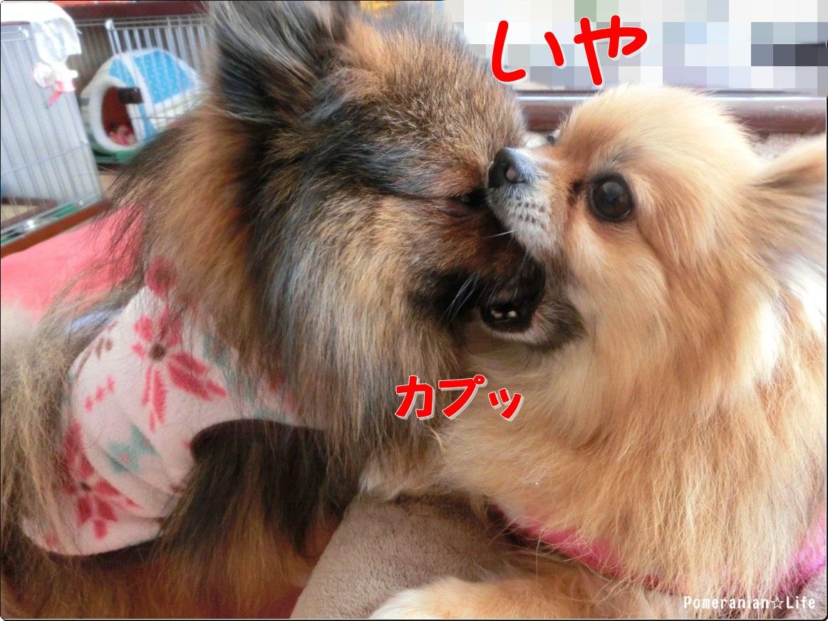 03_20140114191250cf5.jpg