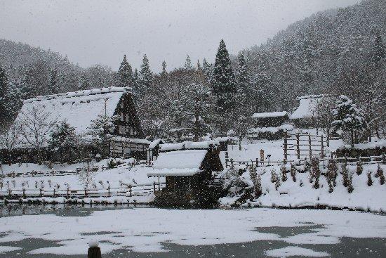 20131224hidasato4.jpg