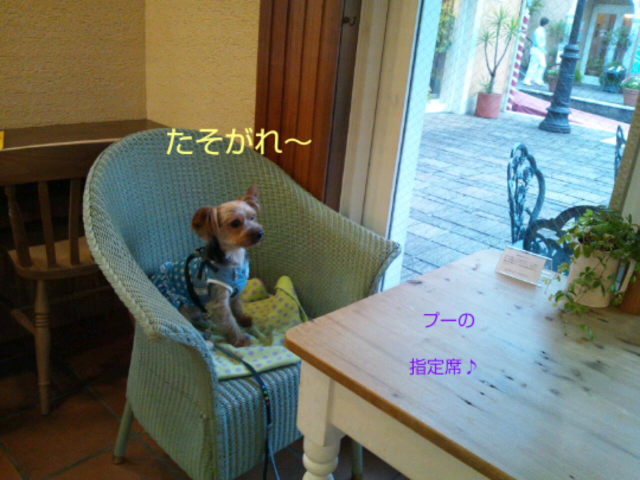 20131007_040736.jpg