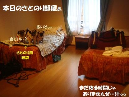 DSC05215_2013121820501200b.jpg
