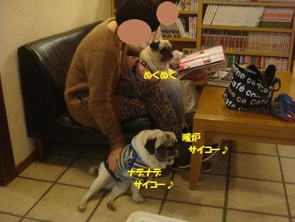 DSC05753_201401032051540c0.jpg