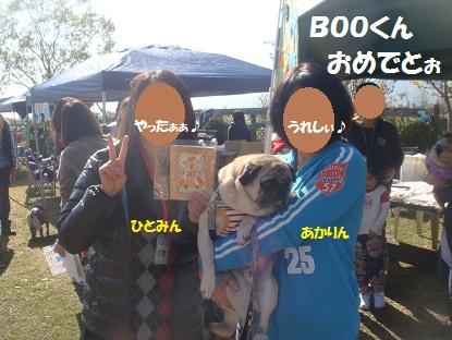 DSC05856_20140104212114802.jpg