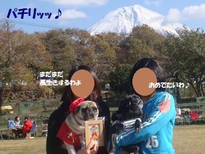 DSC05876_201401042121139ac.jpg