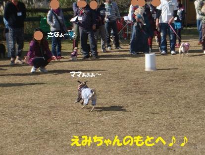 DSC05927_201401060453547d9.jpg