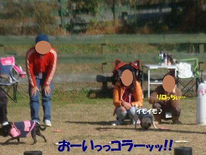 DSC05998.jpg