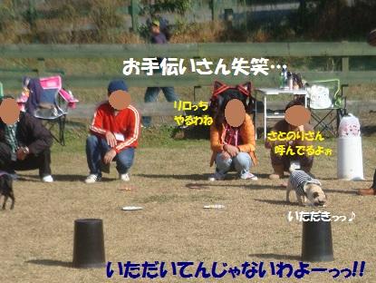 DSC06002_201401090042384d0.jpg