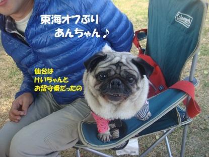 DSC06070_201401042228273fd.jpg