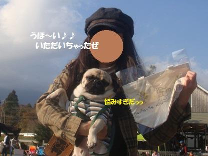 DSC06125_20140113224803ae9.jpg