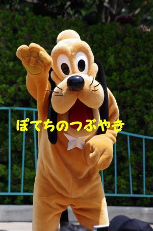 20130629 七夕