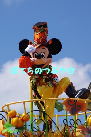 20130929 ミッキー1