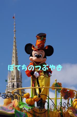 20130929 ミッキー2