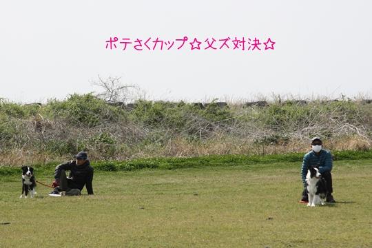201303303114.jpg