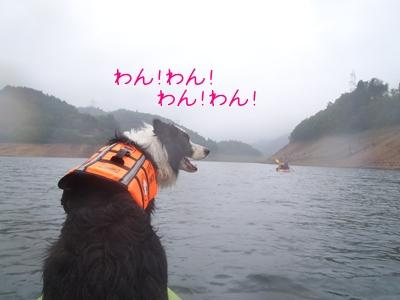 2013060155.jpg