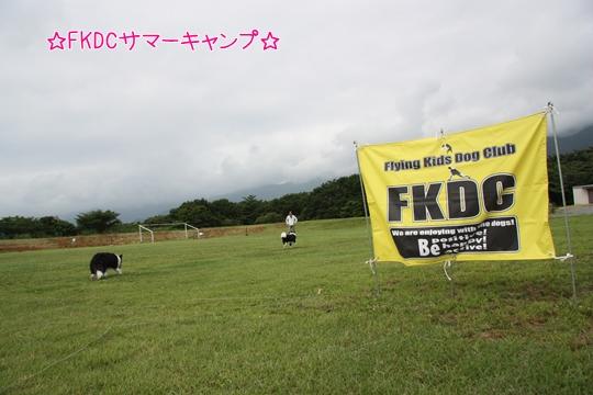 2013080335.jpg