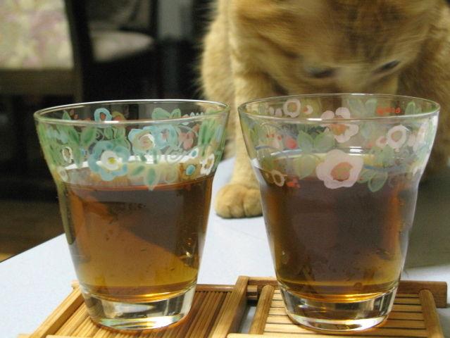 glass_201308191822.jpg