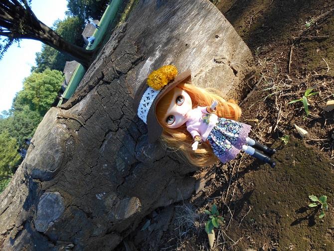 3 アンナと秋の公園