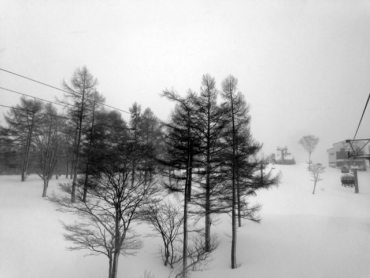 snowboard1314-3.jpg