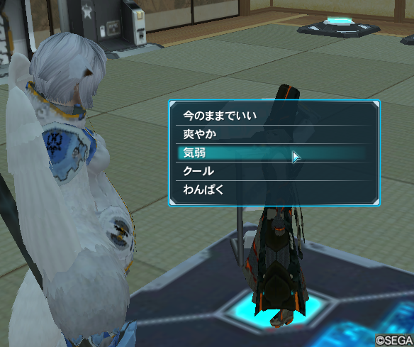 pso20130721_130045_004.png