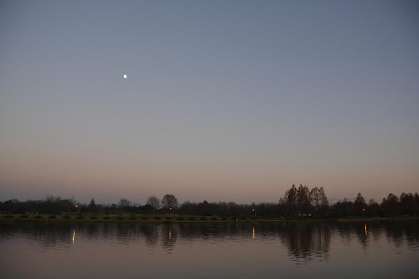 日暮れ時の公園