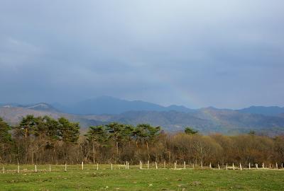 rainbow130426_02.jpg