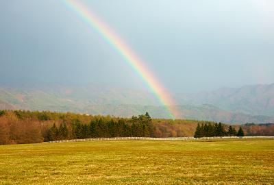 rainbow130506_04.jpg