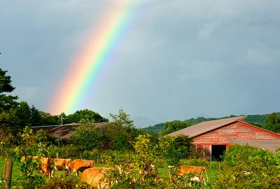 rainbow130901_2_02.jpg