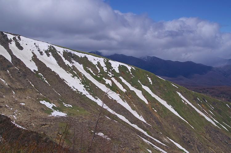 志賀高原 雪景色 3