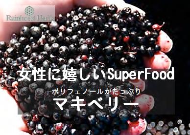 20131228 マキベリーsuperfood