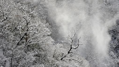 2011滝山峡141104