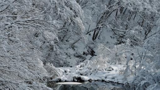 1932滝山峡141223