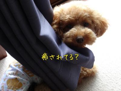 kako-iP0y381ruYxnCxNP_convert_20130725144505.jpg