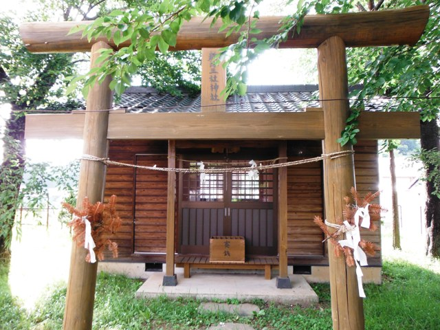 菱形城(小諸市) (4)