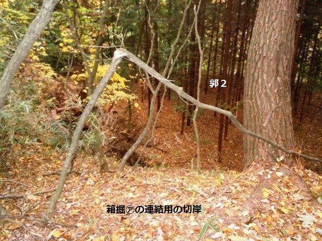 日向城(佐久市) (20)