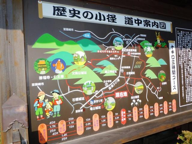 亀山城(三河) (1)