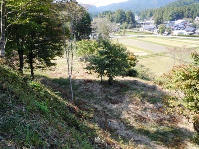 亀山城(三河) (15)