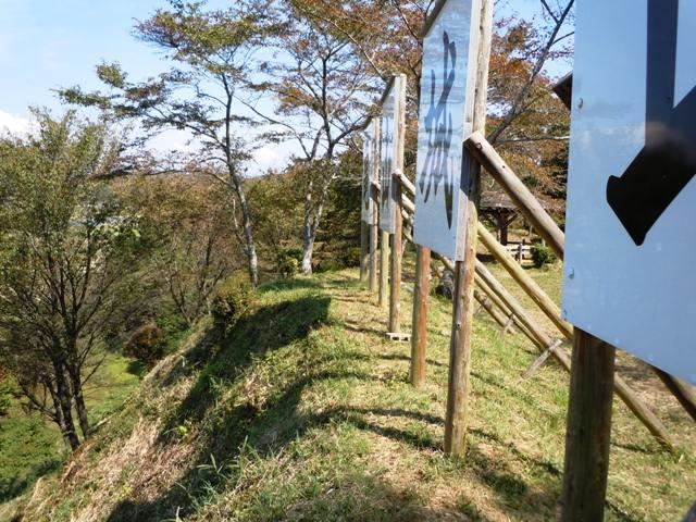 亀山城(三河) (16)