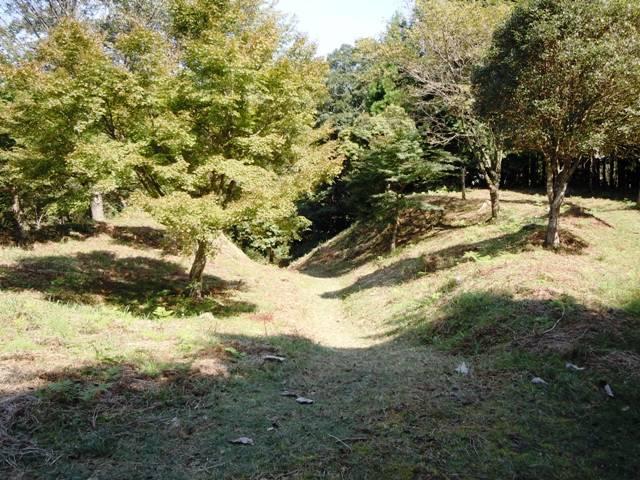 亀山城(三河) (26)