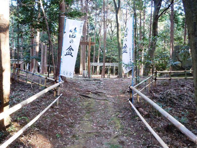 野田城(三河) (9)