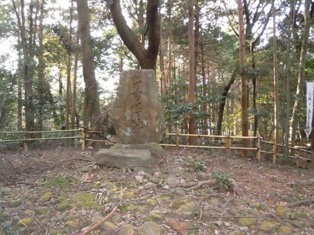 野田城(三河) (12)