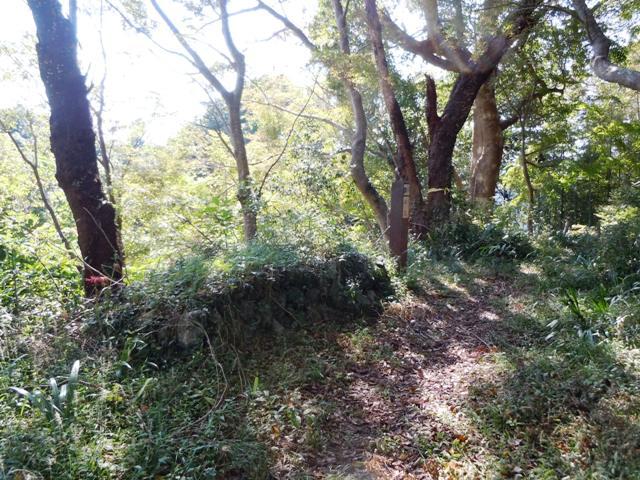 二俣城 (6)